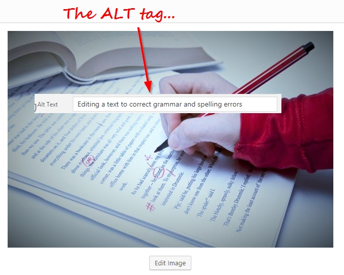Make sure all your images have ALT tags