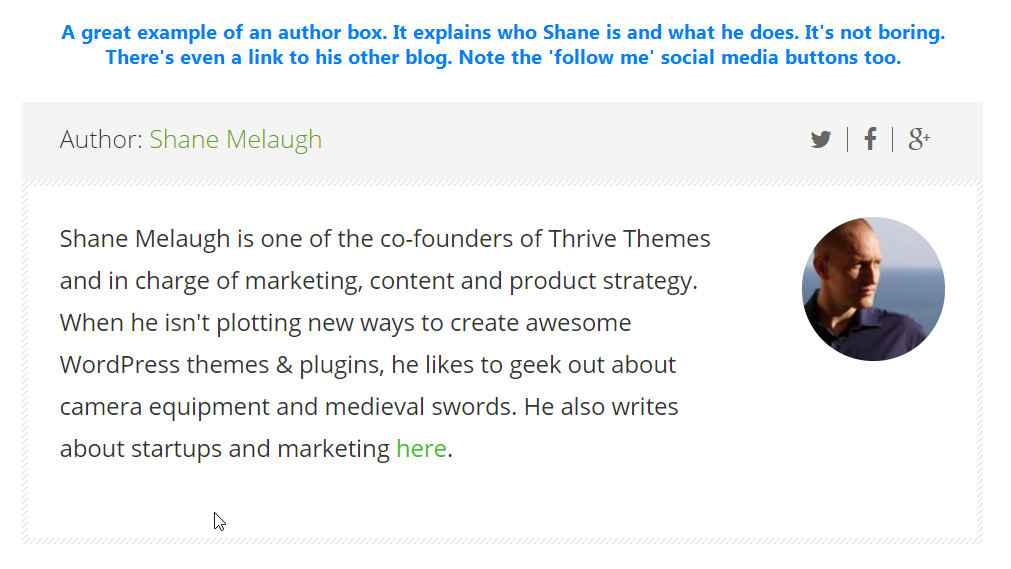 Example of a blogger's author box